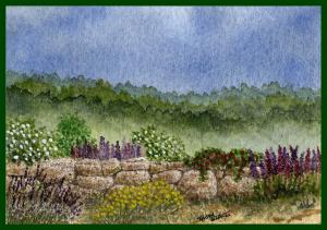 Thom Glace -Featured Watercolor Artist For December
